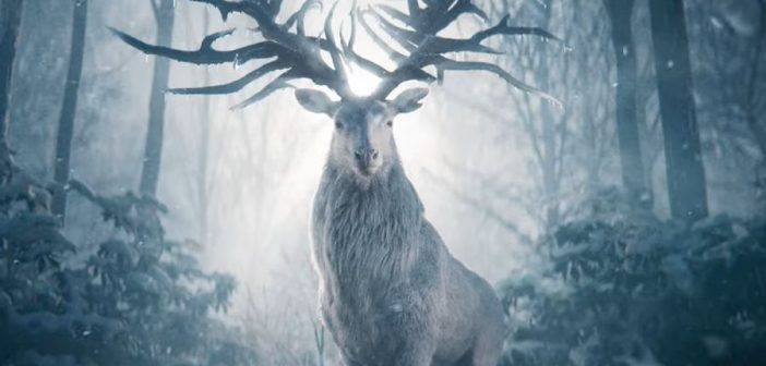 Netflix Announces SHADOW AND BONE for Spring Release